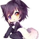 シルク(猫)