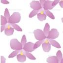 蓮生 水蘭