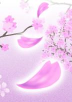 あなたと桜をもう一度。