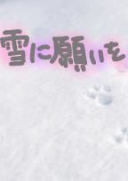 雪に願いを__