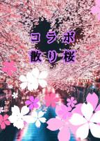 コラボ小説散り桜
