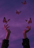 ButterflyのInstagram
