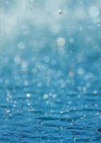 雨の為の世界