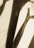 パッチ∞/アーセナルとエースの禁断の恋