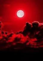 Red Moon 。共依存