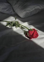 愛してる…けど愛せない~恋愛禁止の世界で〜