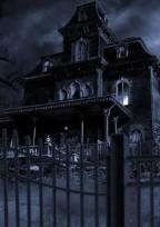 Fischer's 『 吸血鬼パロ 』