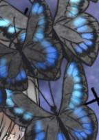 呪術師であり、美しい蝶の、血を受け継ぐもの