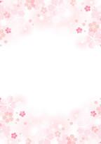 もう桜の咲く季節には。