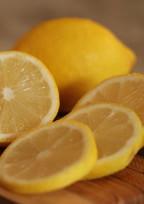 [短編]だから檸檬の爆弾仕掛けましょう