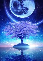 それでも月は綺麗だと思う