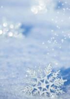 Snow短編Man