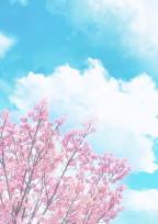 桜の咲く季節に 。