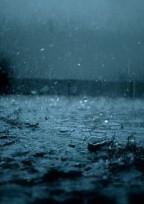 雨の日に出逢ったツギハギの君は 超絶短い&気まぐれ投稿 グロ注意
