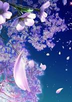 桜の花が咲く頃に。