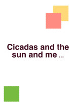 セミと太陽と、私。