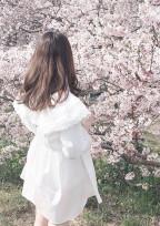 桜がちるころに