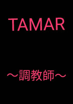 T A M E R ~ 調 教 師 ~  《 黄 》