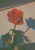 Lovemyself