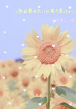 向日葵みたいに笑う君は。 《ハイキュー!!》