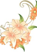 百合の花は美しい〜参加型〜