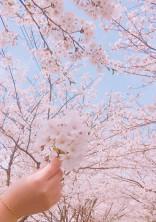 きみと、春が降るこの場所で…