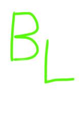 BLに挑戦( ^∀^)