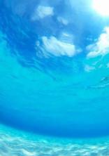 海の中の君