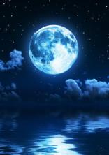 今宵の月は満月です【怪盗】