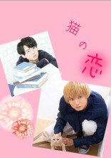 猫の恋(1日で完結するのかチャレンジ!!)