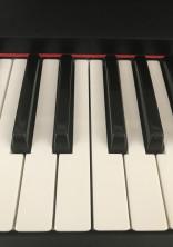 天才ピアニストはstprの?!