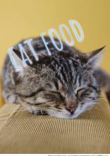 猫ごはん。【kr】