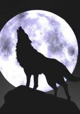 〜人狼ゲーム〜のほかのキャラの役職