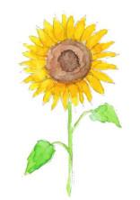 あの日の向日葵