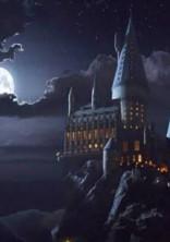 Harry Potter〜冷たい少女が恋をする〜