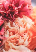 百合の花は恋をして淡く咲き誇る