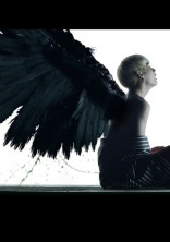 天使の末裔