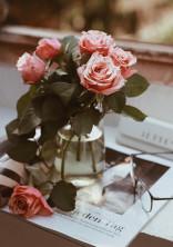 QAA薔薇同盟