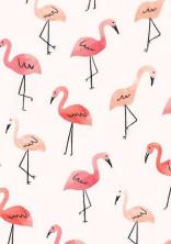 flamingo's  oasis