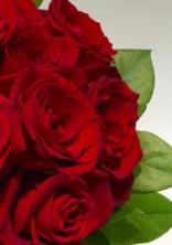 薔薇の意味。