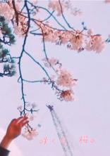 咲くな、桜。
