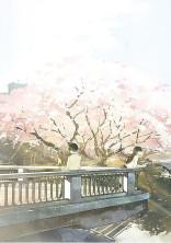 春 夏 秋 冬  .*