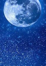 月夜に輝く輝夜姫