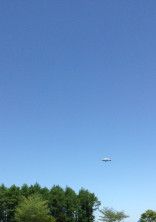 空 〜 見上げた世界