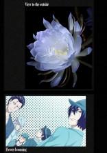 闇に咲く花
