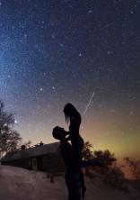 星に願いを______.
