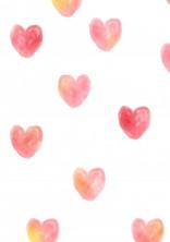 例えば××くんが貴方を愛しているとすれば。