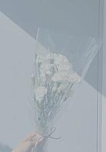 JUMPの紅一点Instagram~○○の彼女ちゃん~