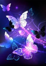 双子の蝶[ハイキュー]×[鬼滅の刃]
