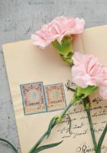 パラドックスの夢手紙